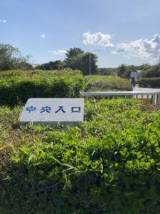 海浜松風通りを直進して公園入り口へ
